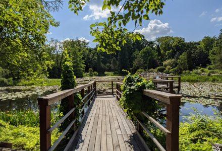 Arboretrum Bolestraszyce